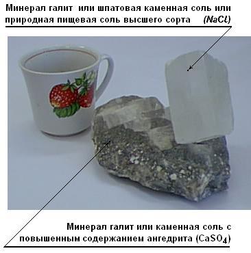 http://stolnia.narod.ru/KC_Chpat.JPG